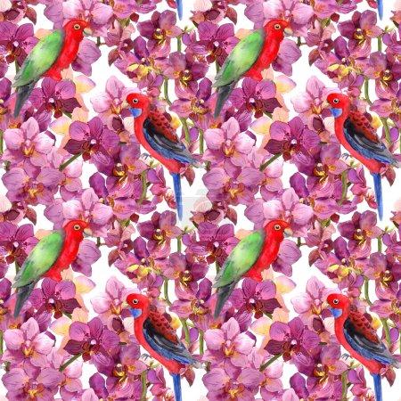 Photo pour Motif floral exotique répétitif - oiseau de perroquet, fleurs d'orchidée fleurisssantes. Papier peint sans couture à l'aquarelle. - image libre de droit