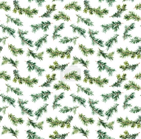 Pine, spruce tree branch. Watercolor repeat seamless pattern