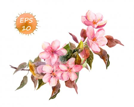 Illustration for Pink fruit tree flower: apple cherry plum sakura. Watercolor vector isolated - Royalty Free Image