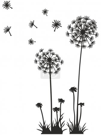 Dandelion Vector Graphics