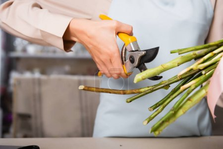 Cropped view of female florist holding secateurs near stalks of flowers on blurred background