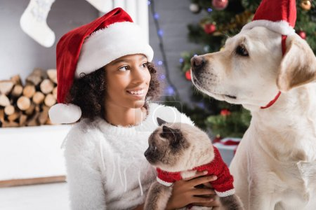 Photo for Smiling african american girl in santa hat looking at labrador dog while holding fluffy cat   on blurred background - Royalty Free Image