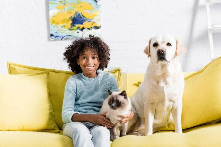 Photo for Smiling curly girl looking at camera, while sitting with labrador and siamese cat on yellow sofa at home - Royalty Free Image