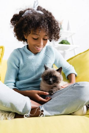 Photo for African american girl stroking and looking at cat, while sitting on sofa on blurred background - Royalty Free Image
