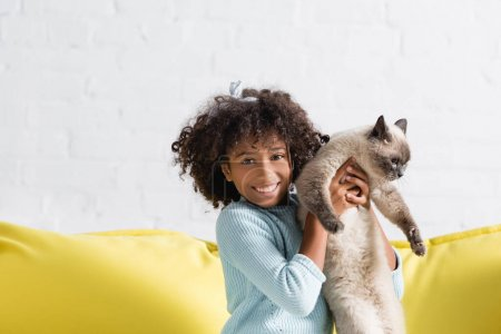 Photo for Happy african american girl holding siamese cat, while looking at camera at home - Royalty Free Image