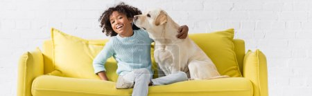 Photo for Curly african american girl laughing and hugging labrador, while sitting on sofa at home, banner - Royalty Free Image