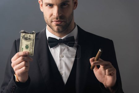 businessman looking at camera while holding cigar and burned dollar banknote isolated on grey