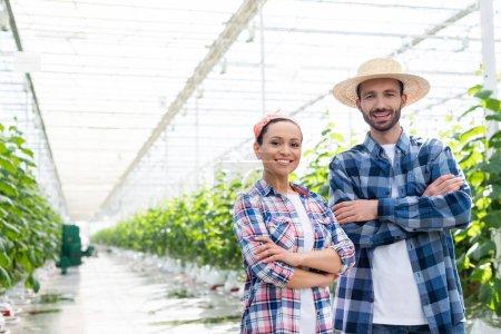 glückliche interrassische Bauern lächeln in die Kamera, während sie mit verschränkten Armen im Gewächshaus stehen