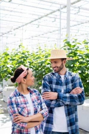 fröhliche interrassische Bauern lächeln einander an, während sie mit verschränkten Armen im Glashaus stehen