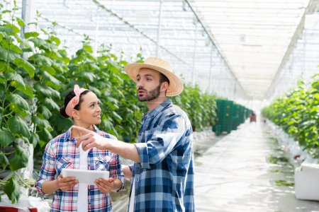 farmer in straw hat pointing with finger in glasshouse near african american colleague with digital tablet