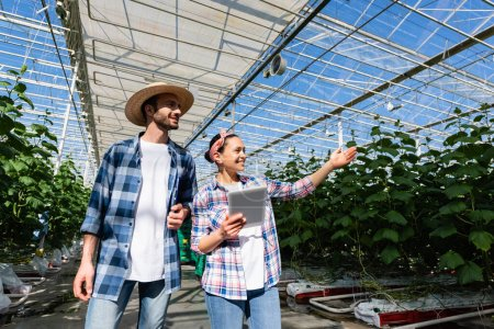 joyful african american farmer pointing at green plants near smiling colleague