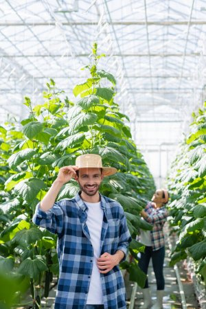 happy farmer in straw hat looking at camera near african american colleague working in glasshouse on blurred background