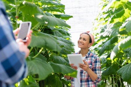 agriculteur afro-américain souriant près des plantes et collègue au premier plan flou