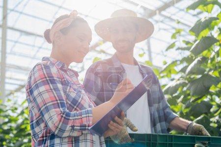Photo pour Agriculteur afro-américain écrivant sur presse-papiers près d'un collègue avec boîte en plastique au soleil - image libre de droit