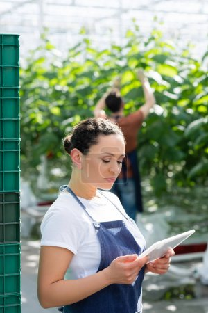 african american woman standing with digital tablet near farmer working in greenhouse on blurred background