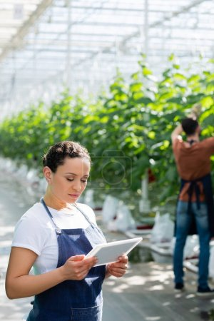african american farmer holding digital tablet near colleague working on blurred background