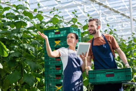 farmer holding plastic box near african american colleague pointing with hand in greenhouse