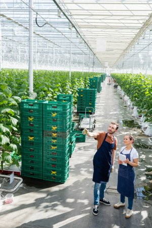 african american farmer with digital tablet near colleague pointing with finger in greenhouse