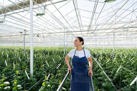 joyful african american farmer smiling while looking away in greenhouse