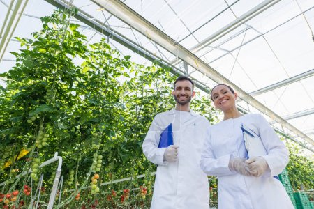 low angle view of agricultural technologists in white coats smiling at camera in greenhouse