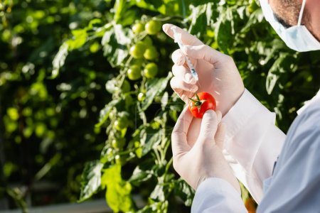 partial view of quality inspector in medical mask testing tomato with syringe