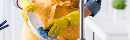 Ausgeschnittene Ansicht einer Frau in Gummihandschuhen Waschteller, Banner