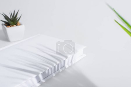 book with hardcover near blurred green plant on white