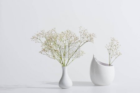 branches with blooming flowers in vases on white background