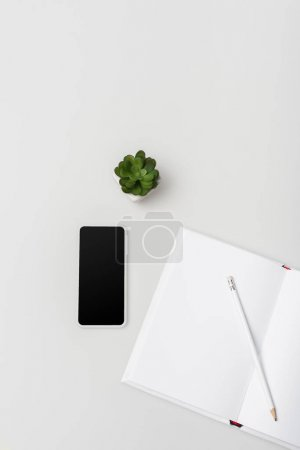 flat lay with notebook with pencil, green plant and smartphone with blank screen isolated on white