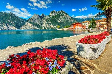 Red flowers and promenade,Lake Garda,Northern Italy,Europe