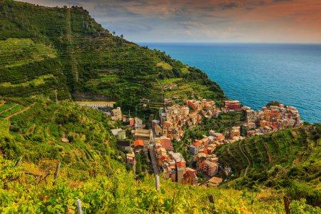 Photo pour Superbe vallée vignoble avec coucher de soleil coloré et belle riviera des Cinque Terre, Manarola ville, Italie, Europe - image libre de droit