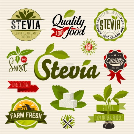 Illustration for Stevia and Organic food label Set. Farm Fresh label and Logo element.  Organic, bio, ecology natural design template. Easy editable for Your design. Retro logotype icon. - Royalty Free Image