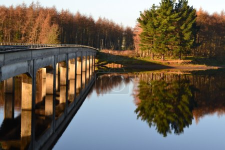 Burgage Bridge reflections