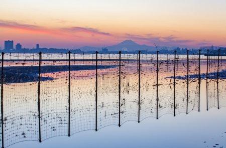 Tokyo bay and Mountain Fuji