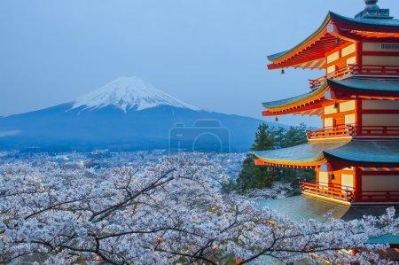 Mountain Fuji view