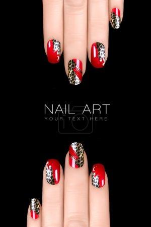 Photo pour Vernis à ongles autocollants avec imprimé animal. manucure professionnelle. nail art concept. Closeup image isolé sur fond noir avec texte d'exemple - image libre de droit