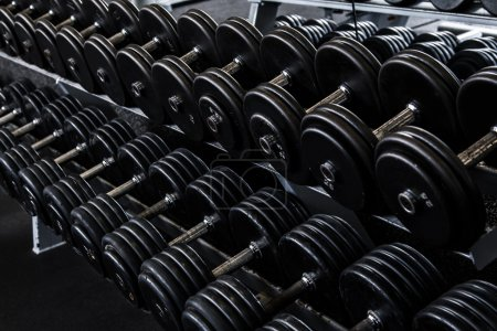 iron dumbbells in gym