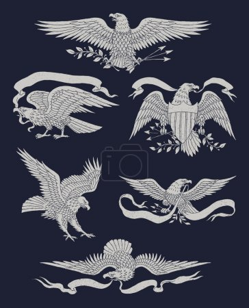 Illustration for Hand Drawn Vintage Eagle Vector Set Hand Drawn Vintage Eagle Vector Set - Royalty Free Image