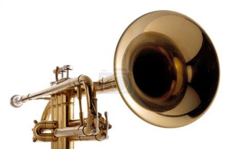 Photo pour Wide angle view of a  trumpet on white background - image libre de droit