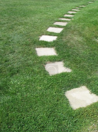 Sidewalk Slabs in Grass