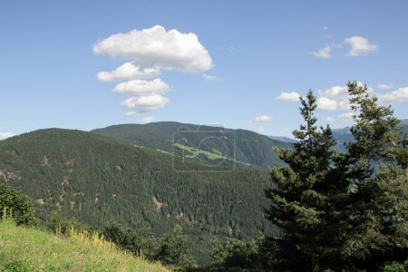 Montana s Rocky Mountains.