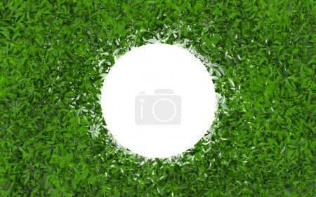 glowing ball on the green leaves background