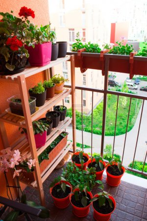 Small herb and flower garden built on small balcony garden