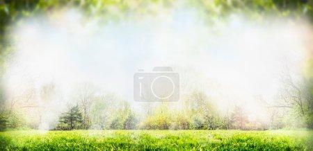 Sprig nature background