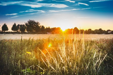 Sunset landscape view