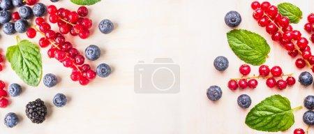 Different summer berries