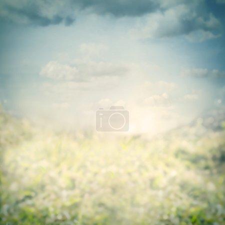 Blue blurred nature background