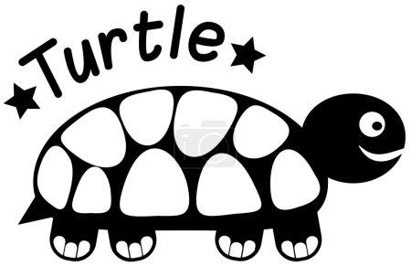 Profile turtle