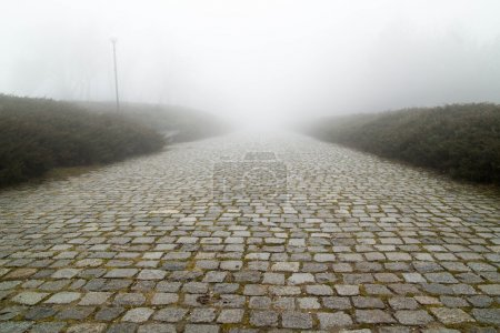 Paving stone road with fog