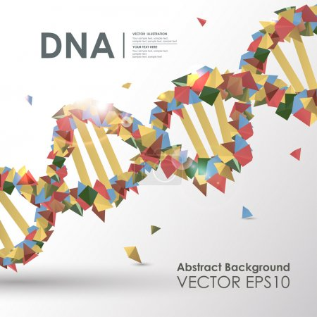 Illustration for Abstract colored polygonal design concept background DNA. Vector business medical illustration - Royalty Free Image